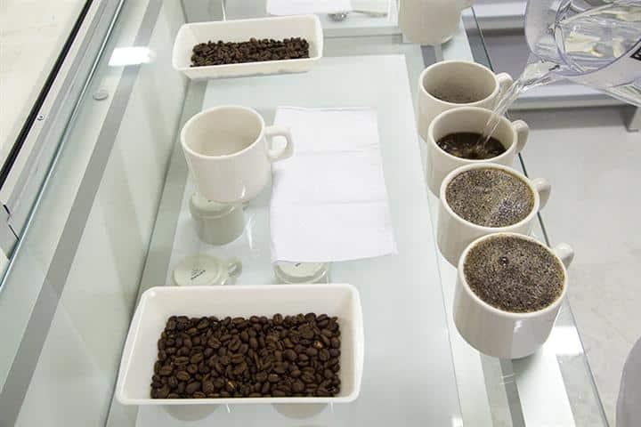 Nota Cafe especial (Small)
